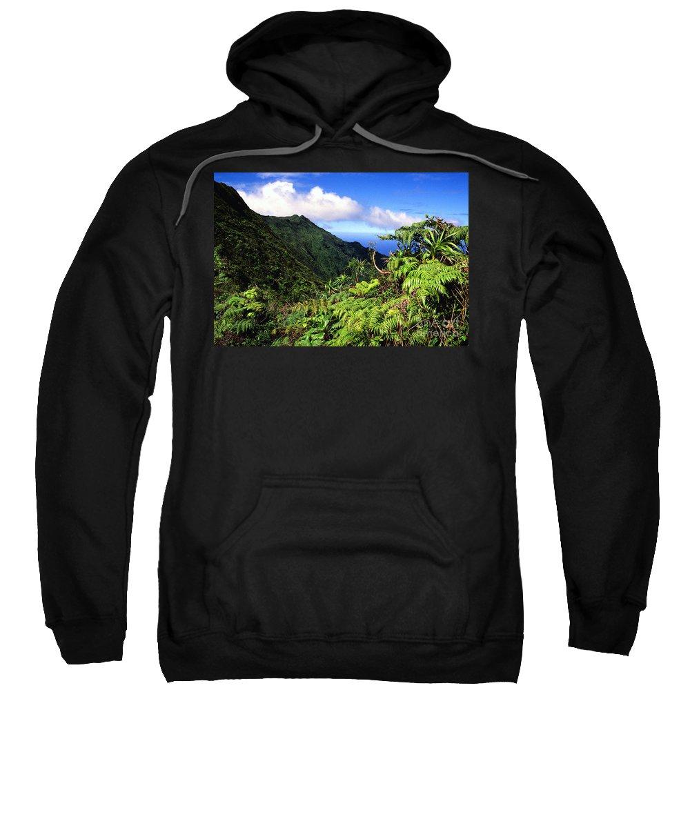 Hapu Tree Ferns Sweatshirt featuring the photograph Koolau Summit Trail by Thomas R Fletcher