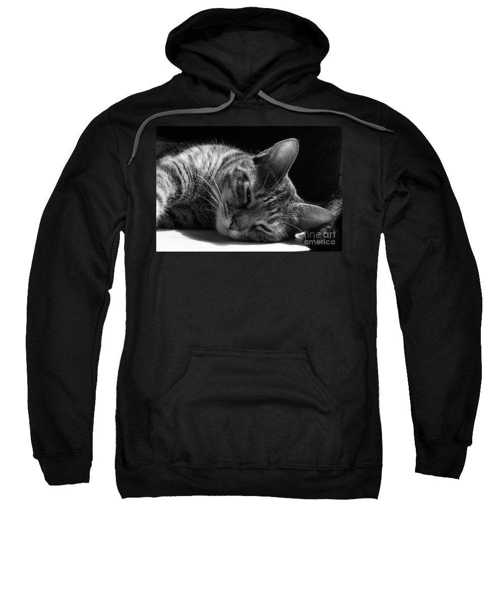 Cat Sweatshirt featuring the photograph Lazy Afternoon by Maria Bonnier-Perez
