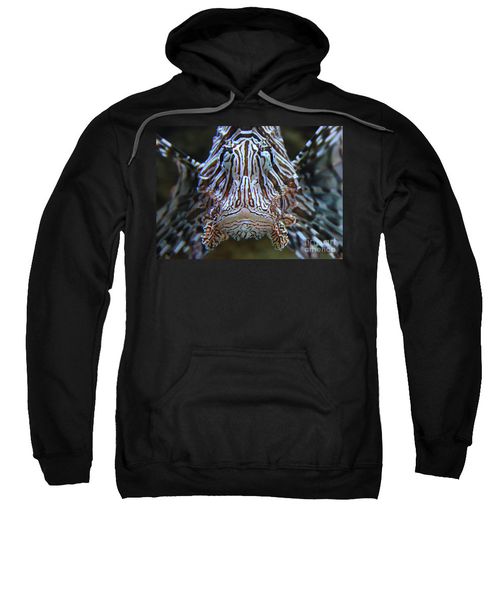 Fish Sweatshirt featuring the photograph Lion Fish by Carol Groenen