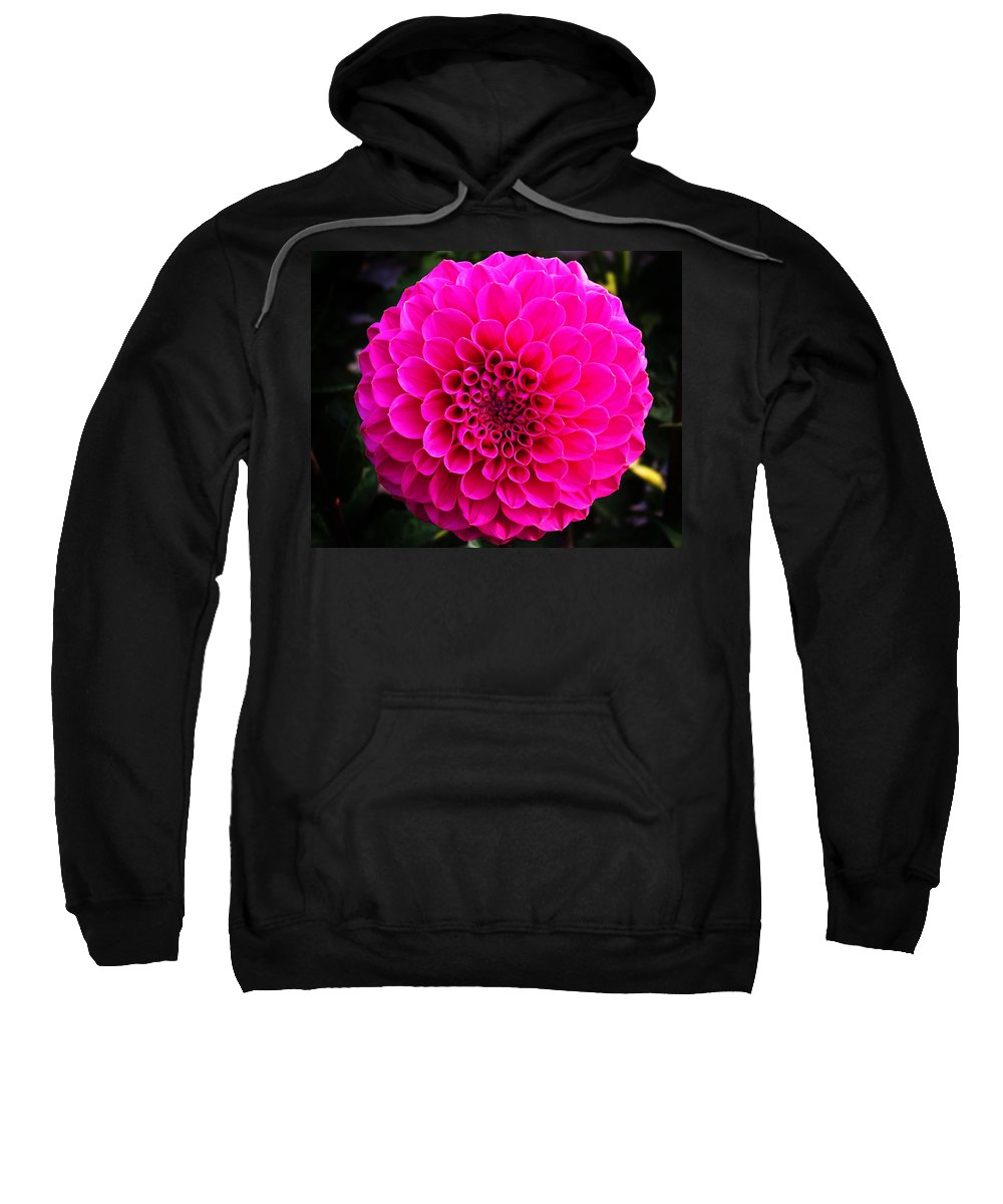 Flower Sweatshirt featuring the photograph Pink Flower by Anthony Jones