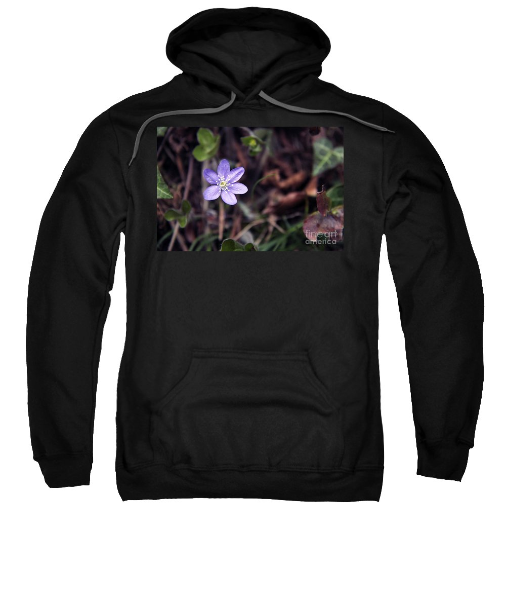 Flower Sweatshirt featuring the photograph Purple Flower by Lisa Boland