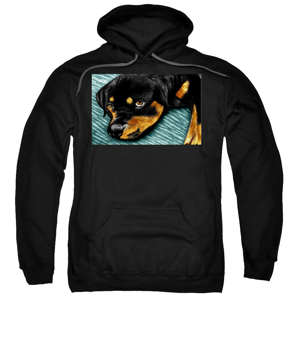 Rot Wilier Sweatshirt featuring the drawing Rotty by Peter Piatt