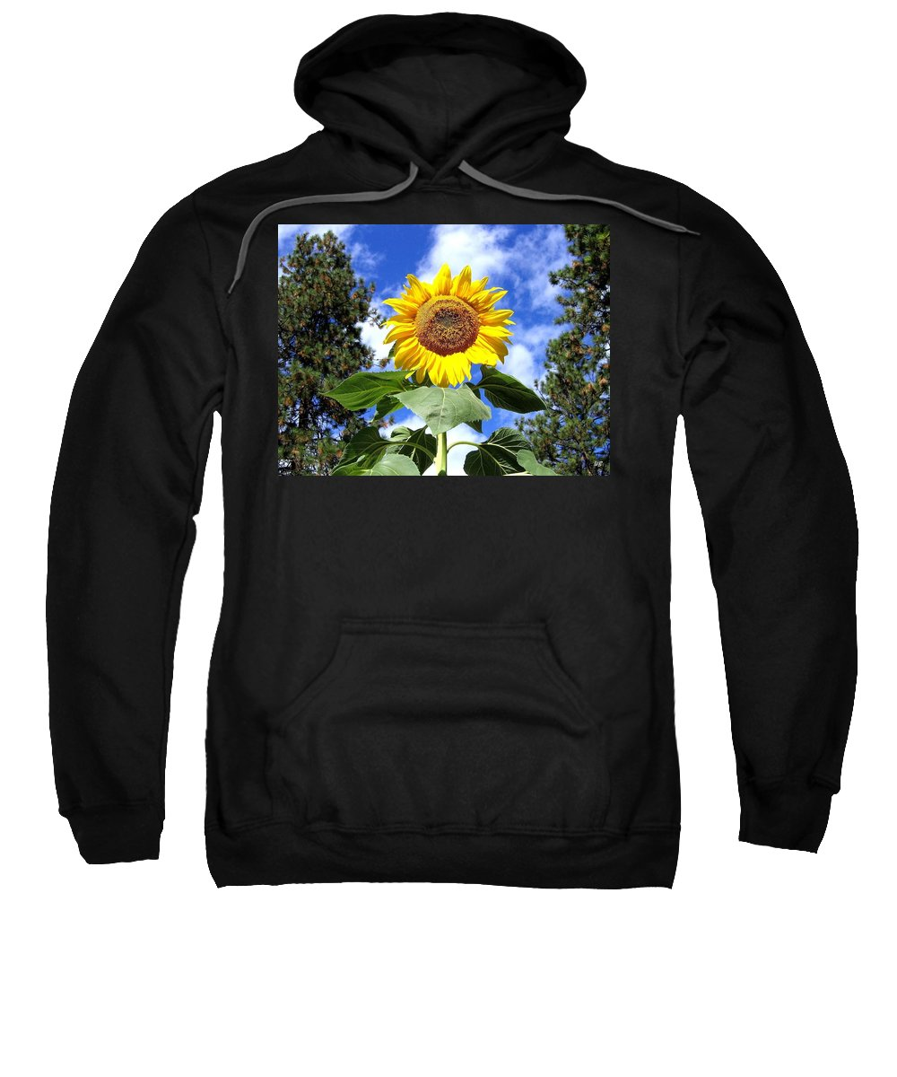 Sunflower Sweatshirt featuring the photograph Tall And Sunny by Will Borden