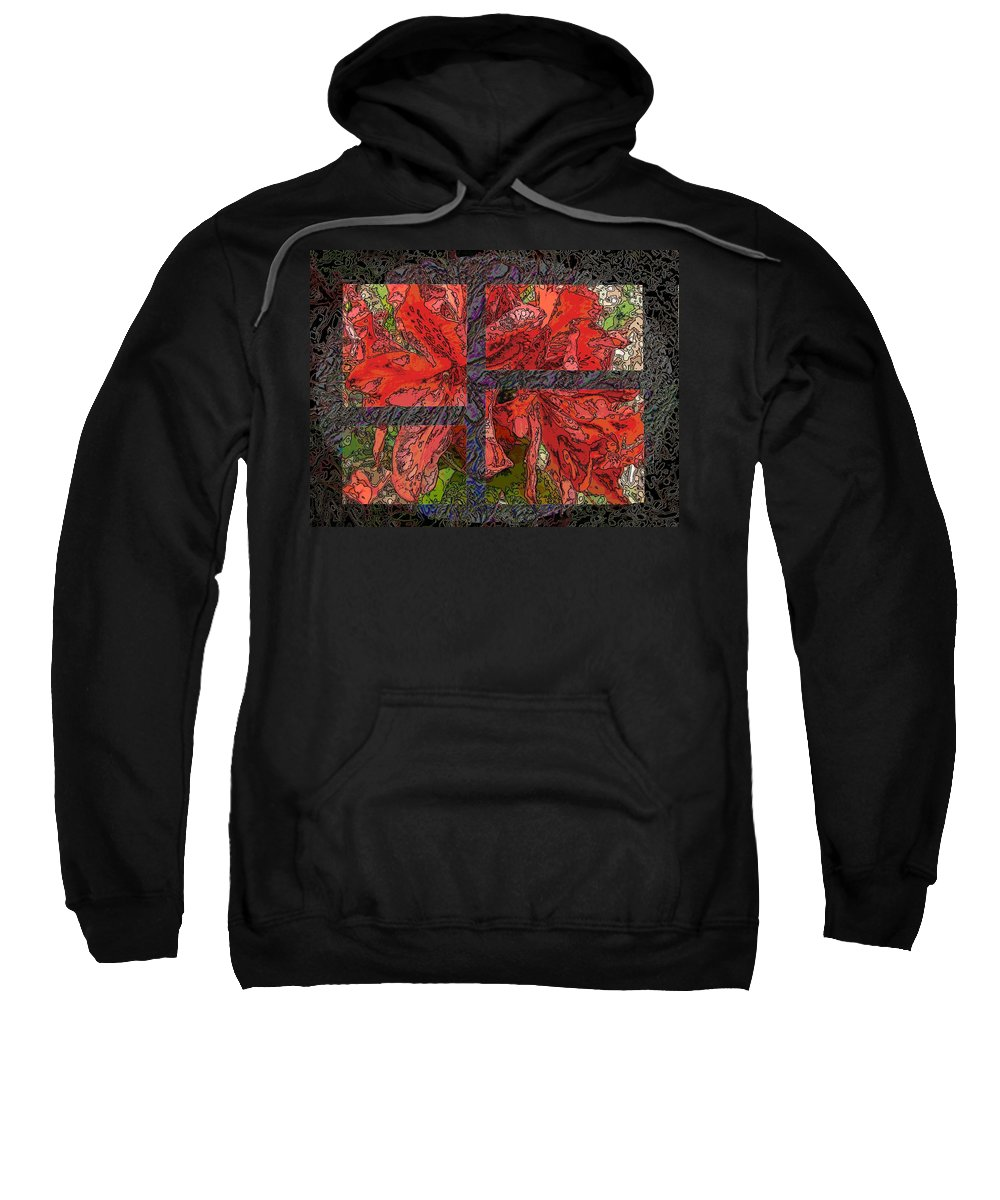 Abstract Sweatshirt featuring the digital art The Rhody 04 by Tim Allen