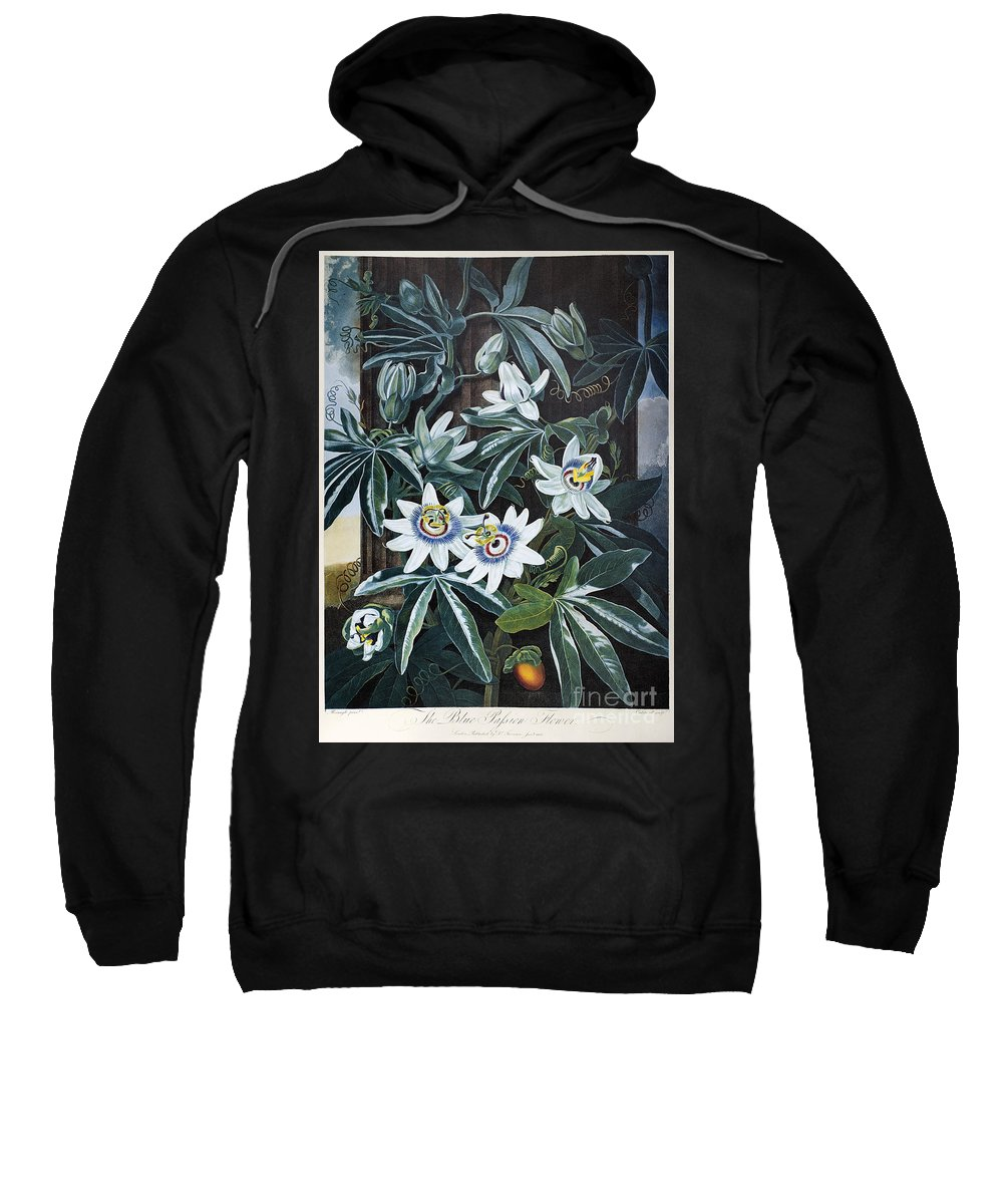 1800 Sweatshirt featuring the photograph Thornton: Passion-flower by Granger