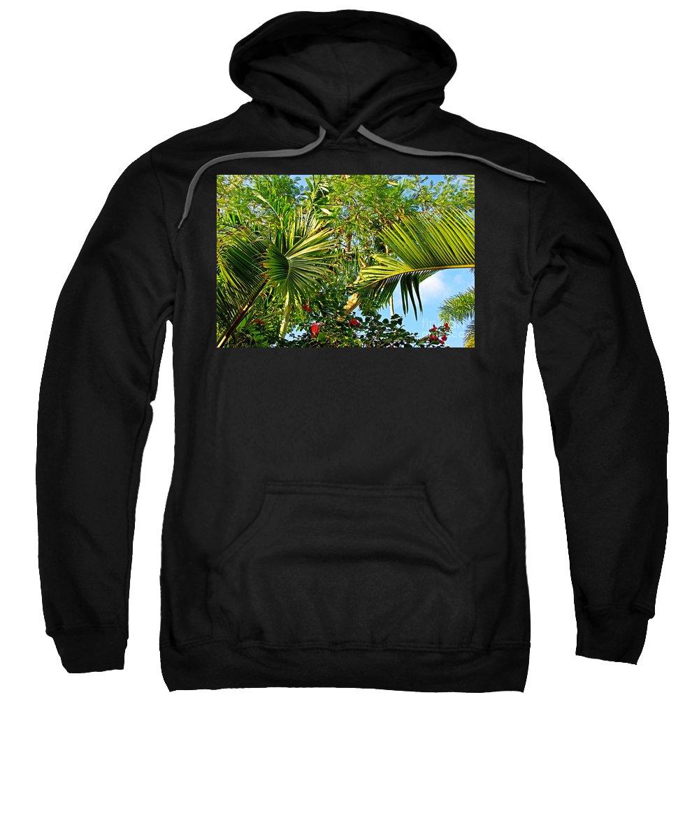 Tropical Sweatshirt featuring the photograph Tropical Plants by Zal Latzkovich