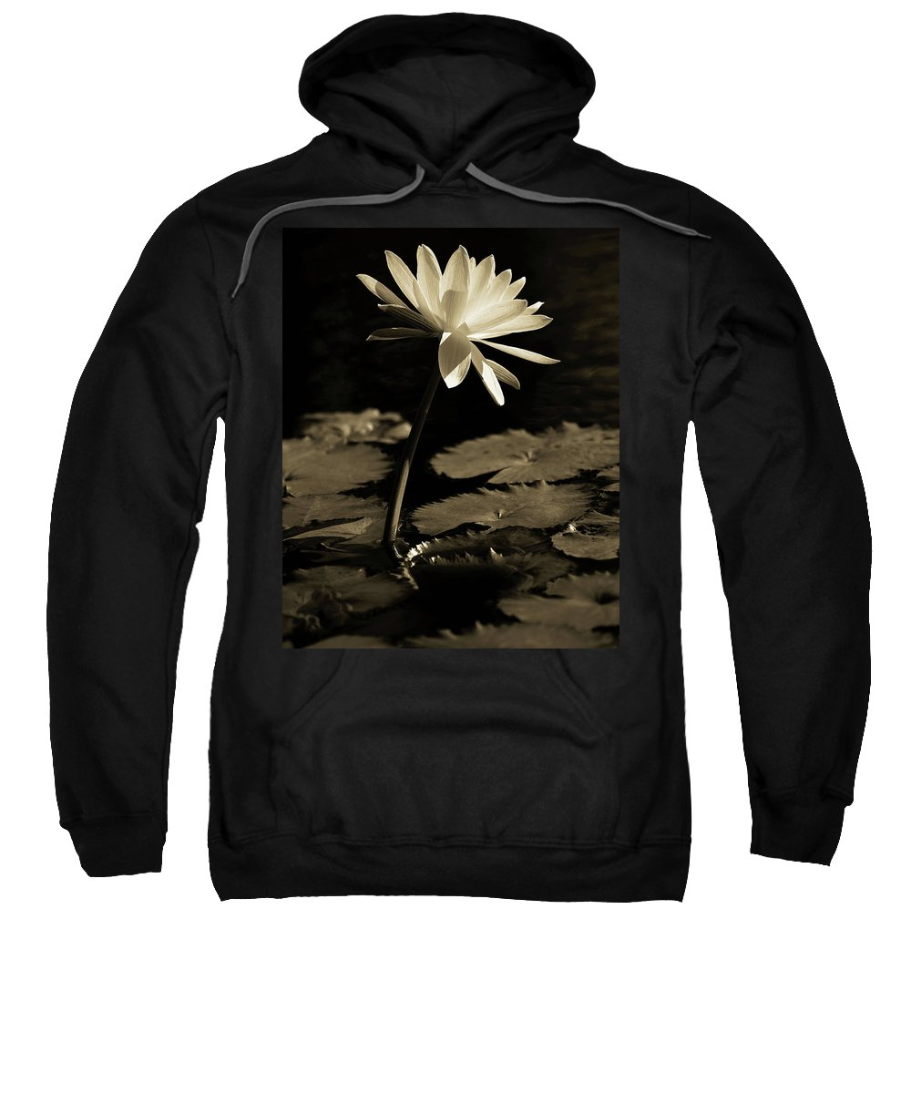 Naples Botanical Garden Sweatshirt featuring the photograph Water Lily by Dennis Goodman