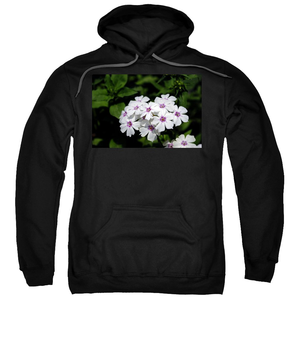 Petals Sweatshirt featuring the photograph White Flowers by Sumit Mehndiratta