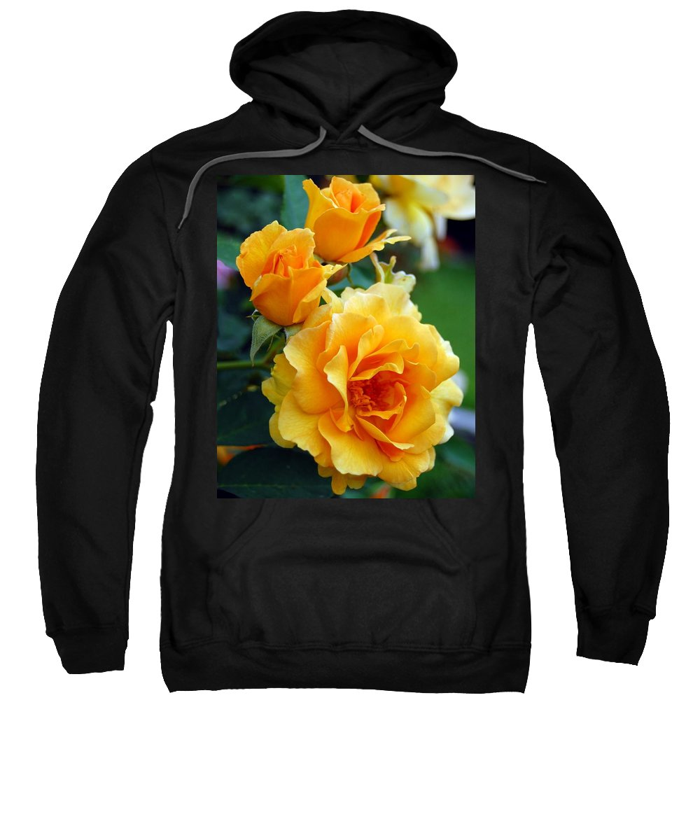 Flower Sweatshirt featuring the photograph Yellow Roses by Amy Fose
