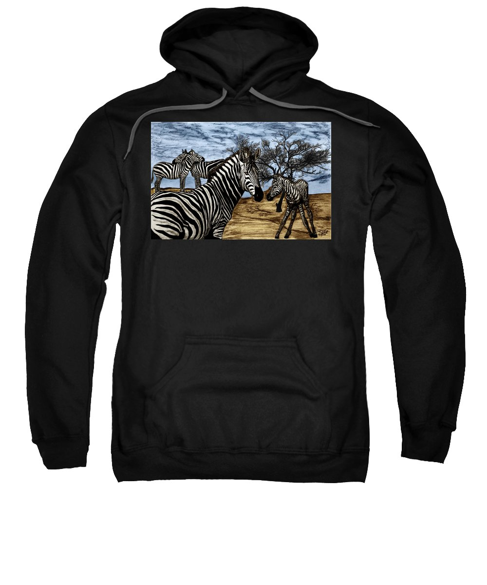 Zebra Outback Sweatshirt featuring the drawing Zebra Outback by Peter Piatt