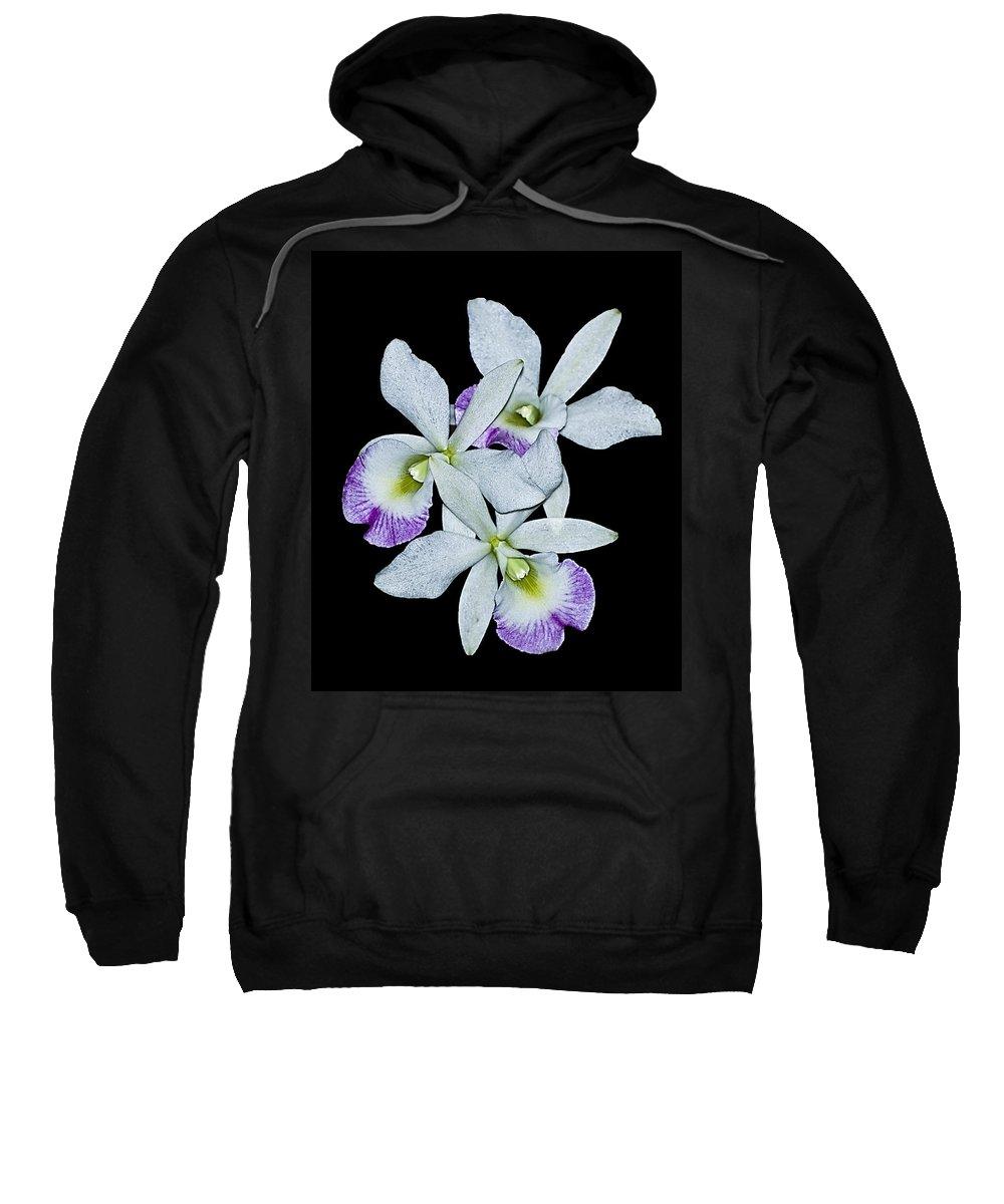 Orquids Sweatshirt featuring the photograph Orquid by Galeria Trompiz