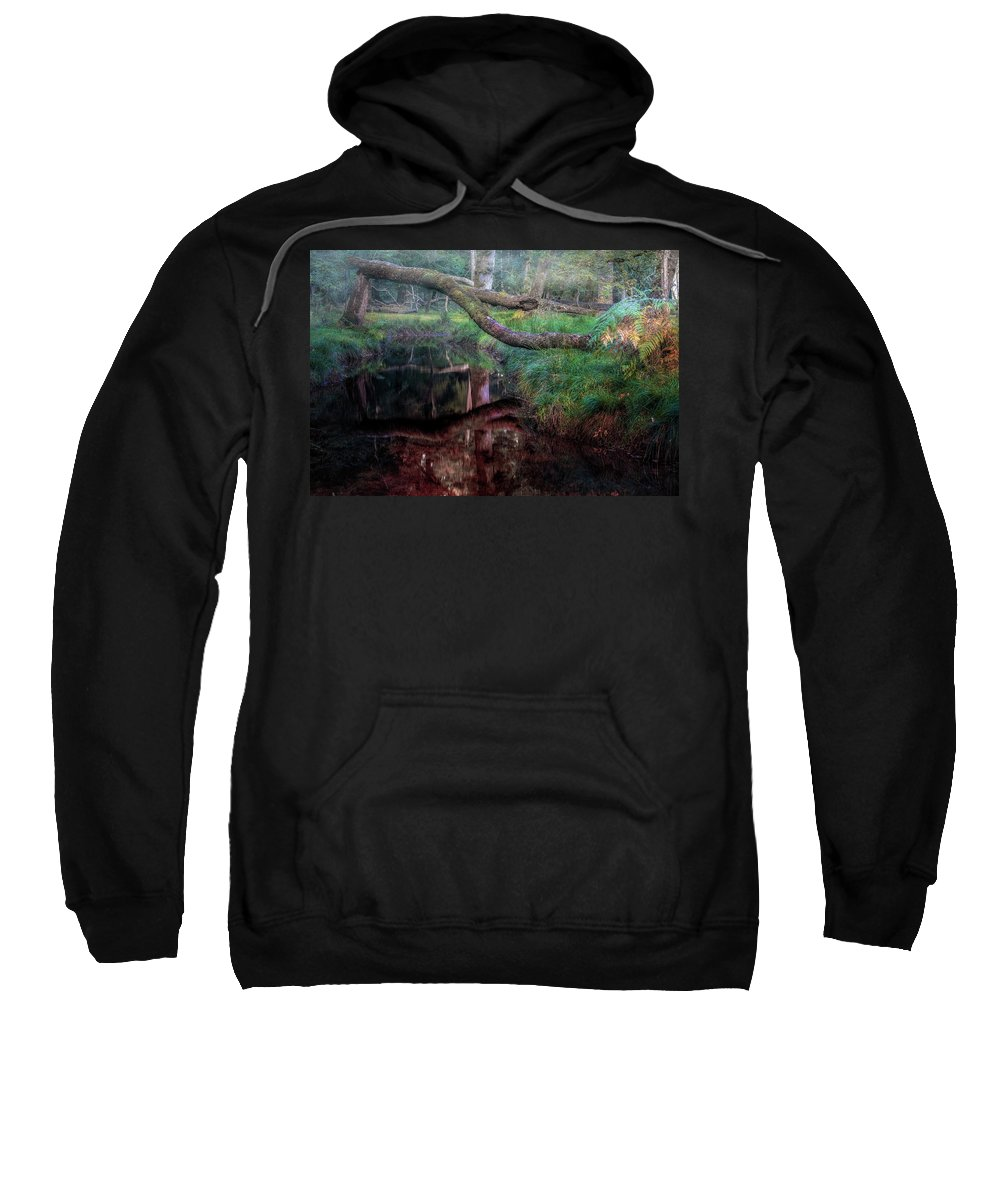 Blackwater Sweatshirt featuring the photograph New Forest - England by Joana Kruse
