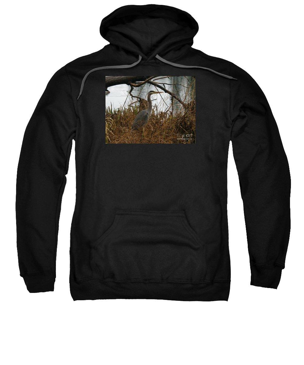 Wildlife Sweatshirt featuring the photograph Untitled by John Huntsman