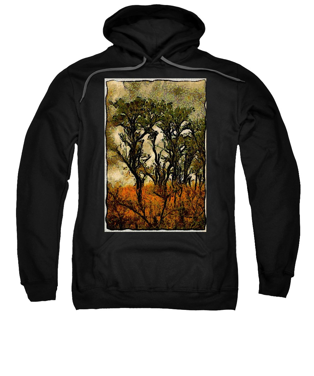 Tree Sweatshirt featuring the photograph Abstract Tree by Galeria Trompiz