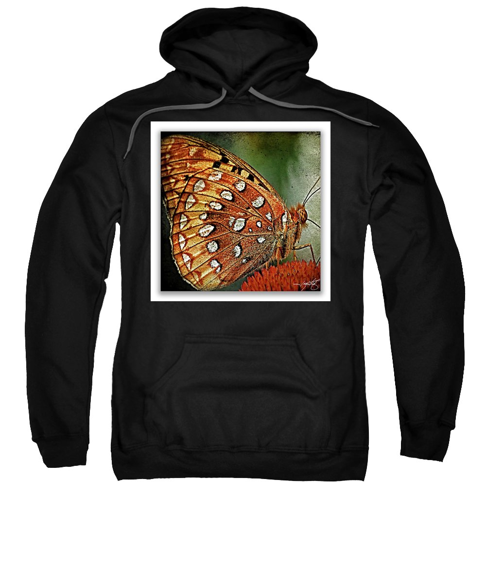 Butterflies Sweatshirt featuring the photograph Aphrodite Fritillary 1 by Ingrid Smith-Johnsen