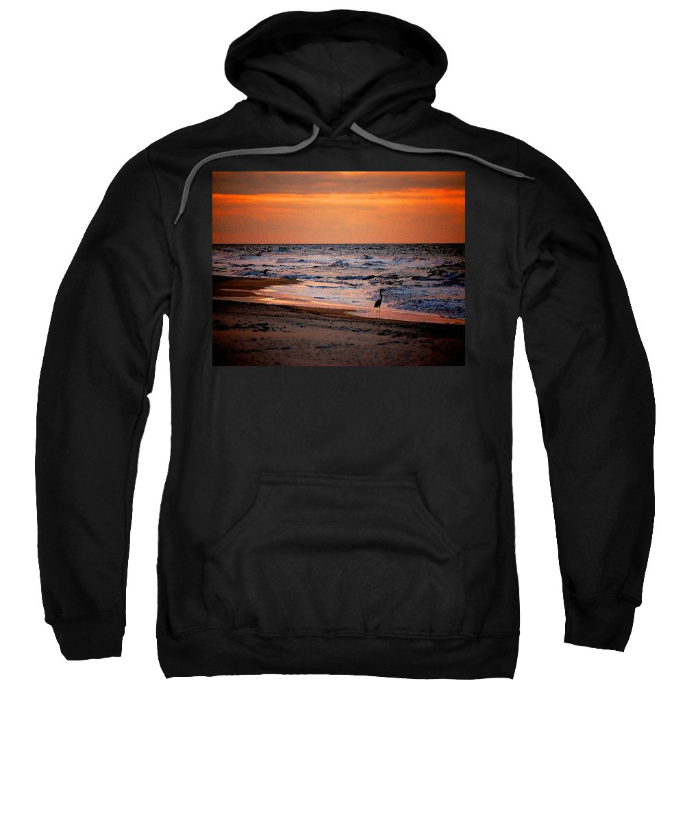 Pelican Sweatshirt featuring the painting 2 Herons On The Beach by Michael Thomas
