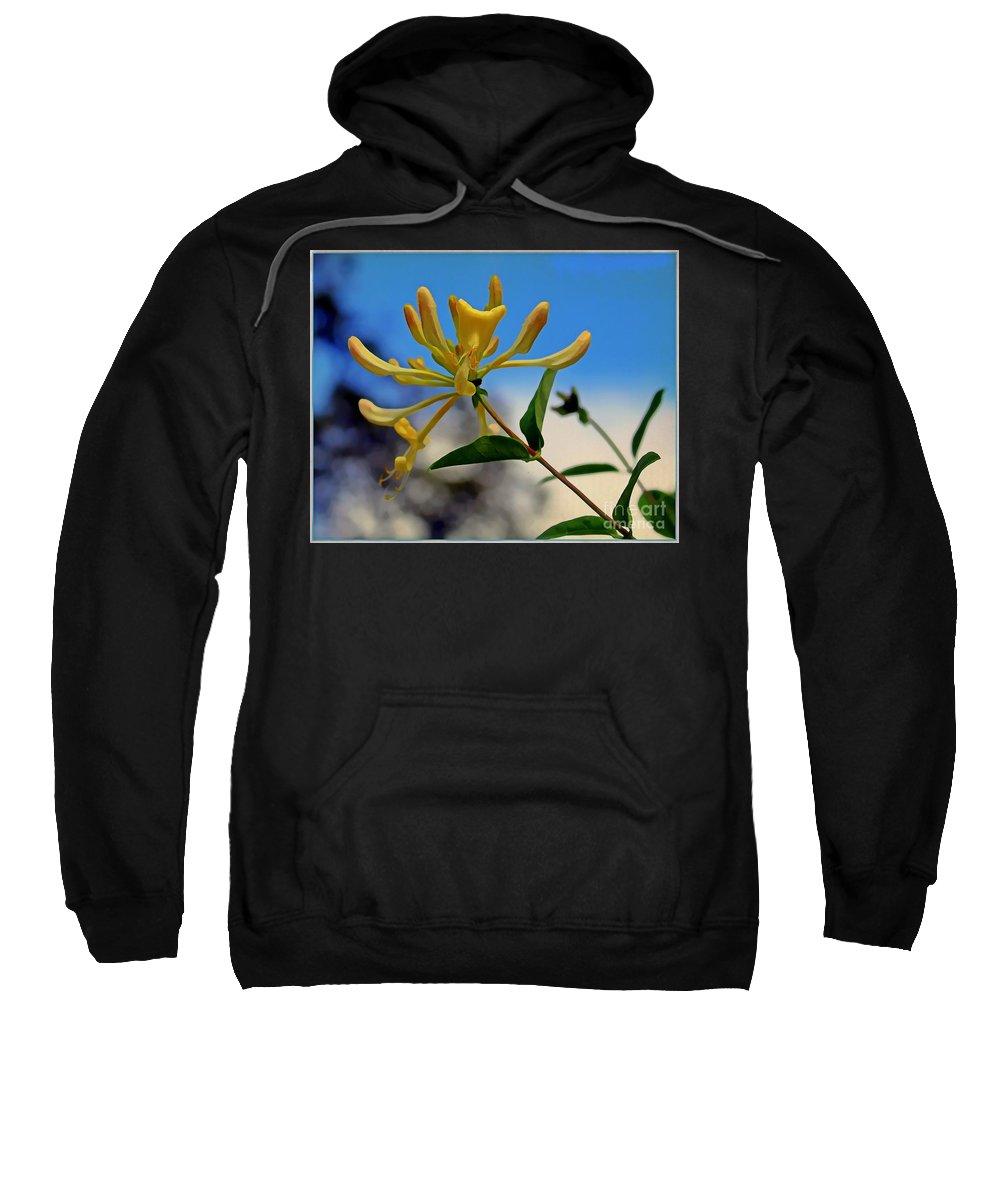 Honeysuckle Sweatshirt featuring the photograph Honeysuckle by Mindy Newman