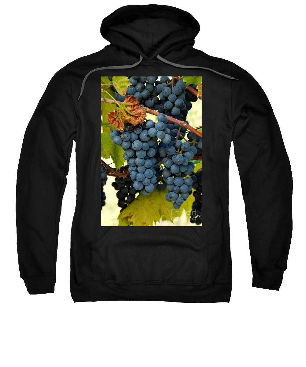 Grapes Sweatshirt featuring the photograph Marechal Foch Grapes by George Mattei