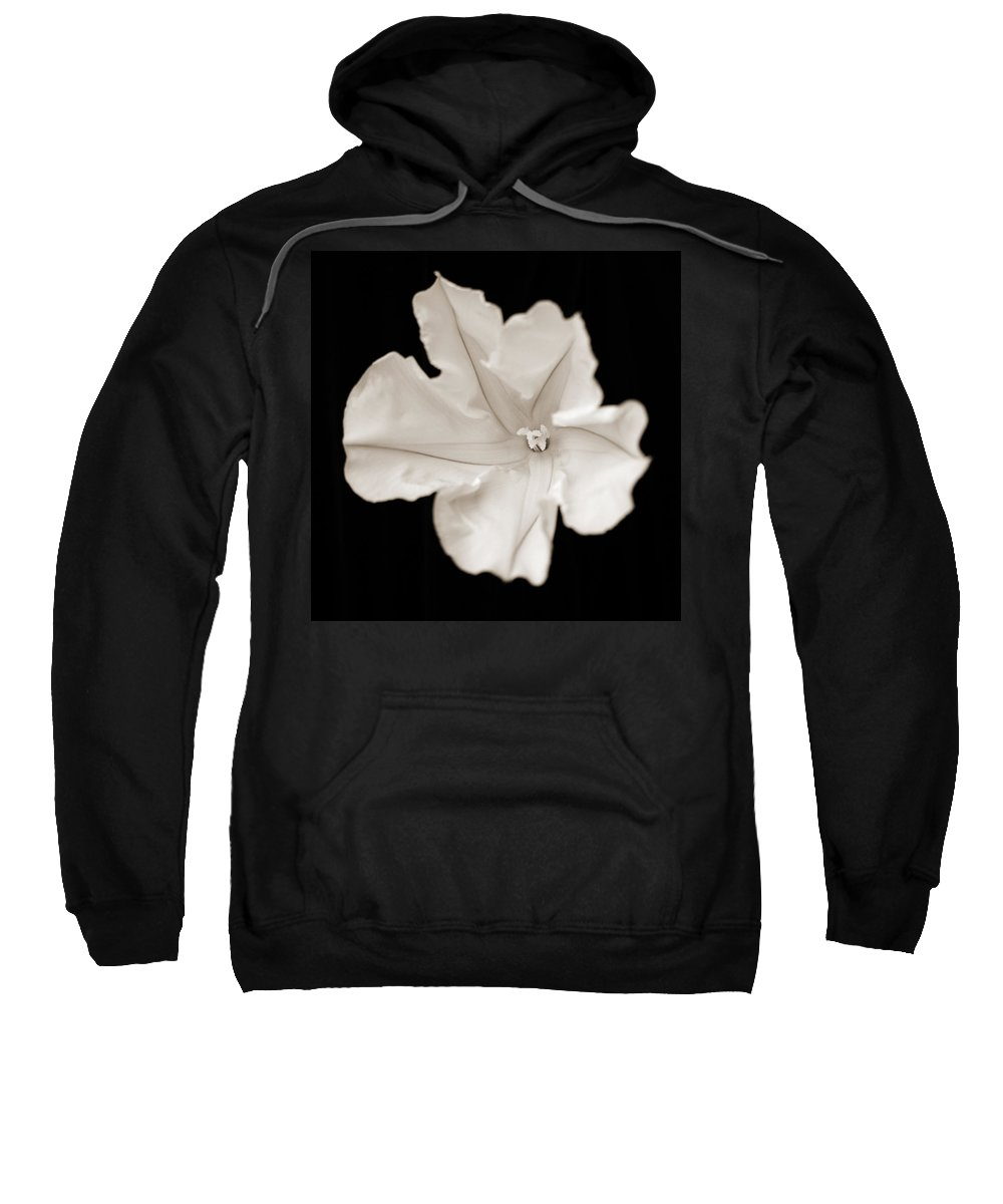 Flowers Sweatshirt featuring the photograph Moon Flower 2 by Norah Holsten