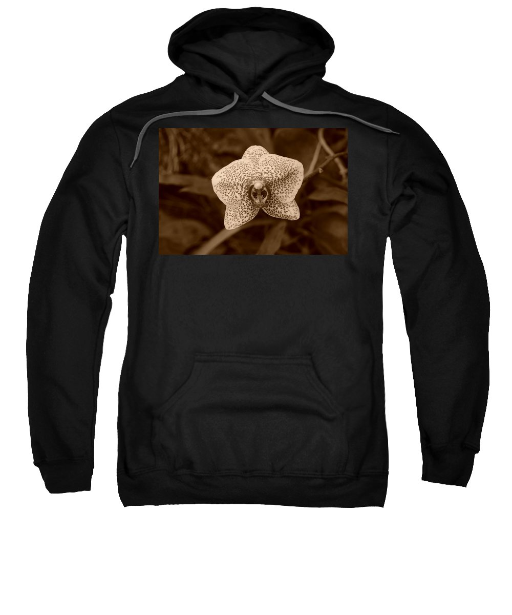 Macro Sweatshirt featuring the photograph Orchid by Rob Hans
