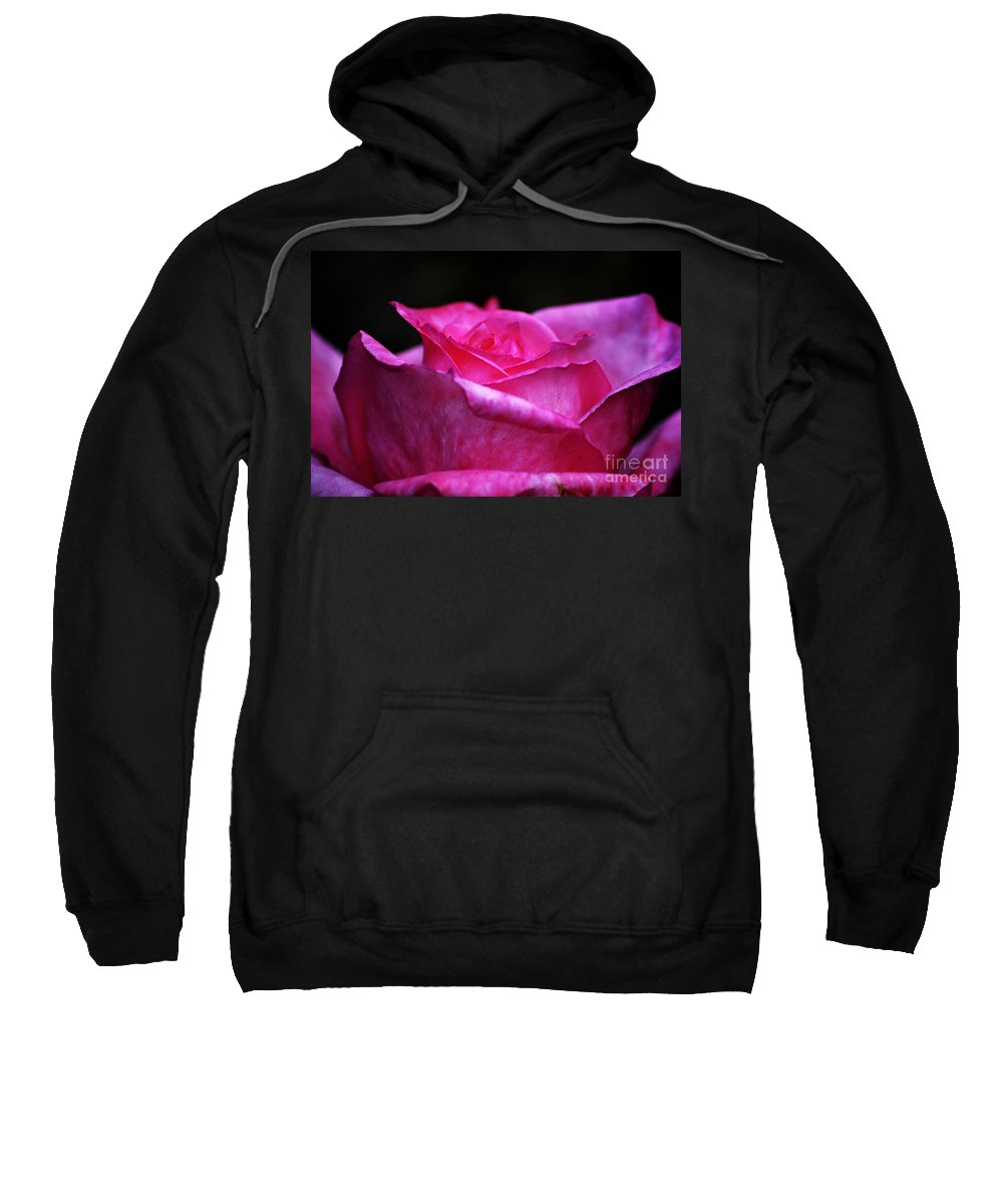 Clay Sweatshirt featuring the photograph Pink Rose by Clayton Bruster