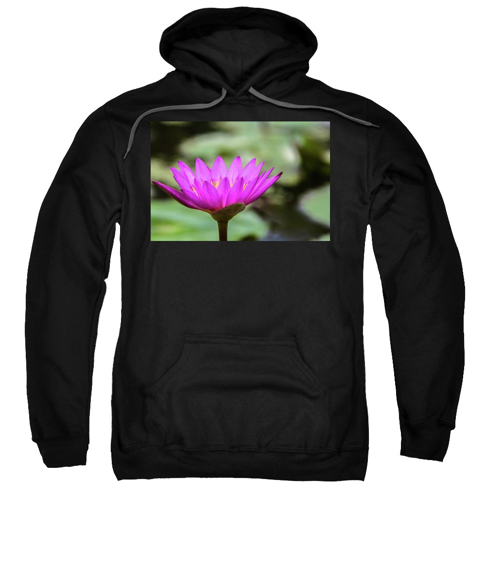 Asia Sweatshirt featuring the photograph Waterlilly by Peteris Vaivars