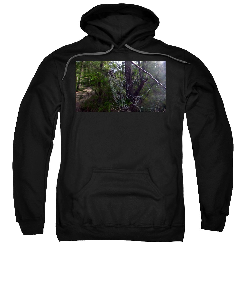 Australia Sweatshirt featuring the photograph Australia - Uniquely Yours Spider Web by Jeffrey Shaw