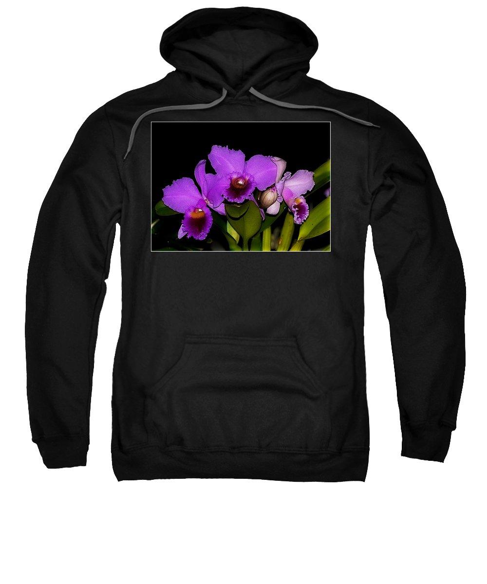 Orquid Sweatshirt featuring the photograph Orquid by Galeria Trompiz