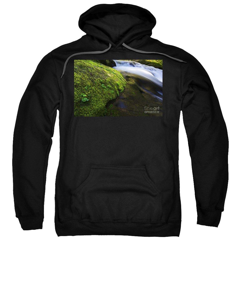 Sweet Creek Sweatshirt featuring the photograph Sweet Creek Oregon 12 by Bob Christopher
