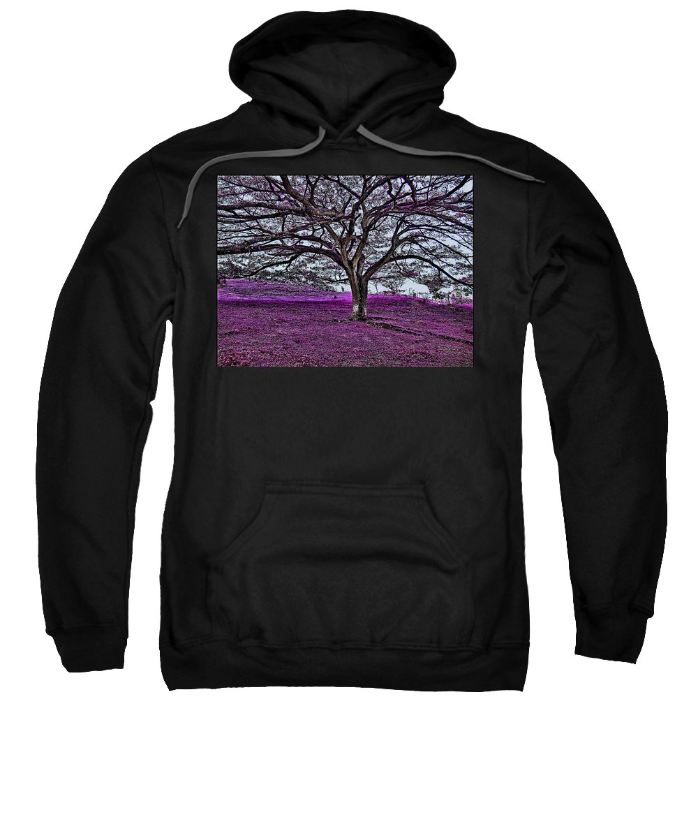 Sweatshirt featuring the photograph Tree by Galeria Trompiz