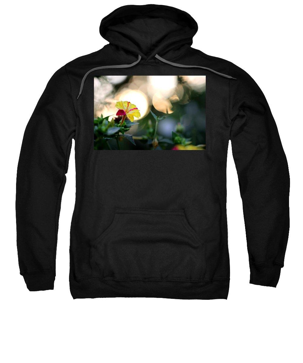 Flower Sweatshirt featuring the photograph 4 O'clock by Gary Yost