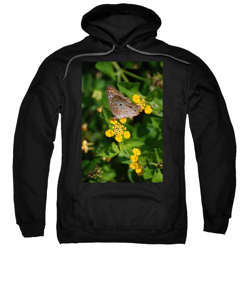 Butterfly Sweatshirt featuring the photograph 5 Yellow Flowers And A Buttefly by Rob Hans