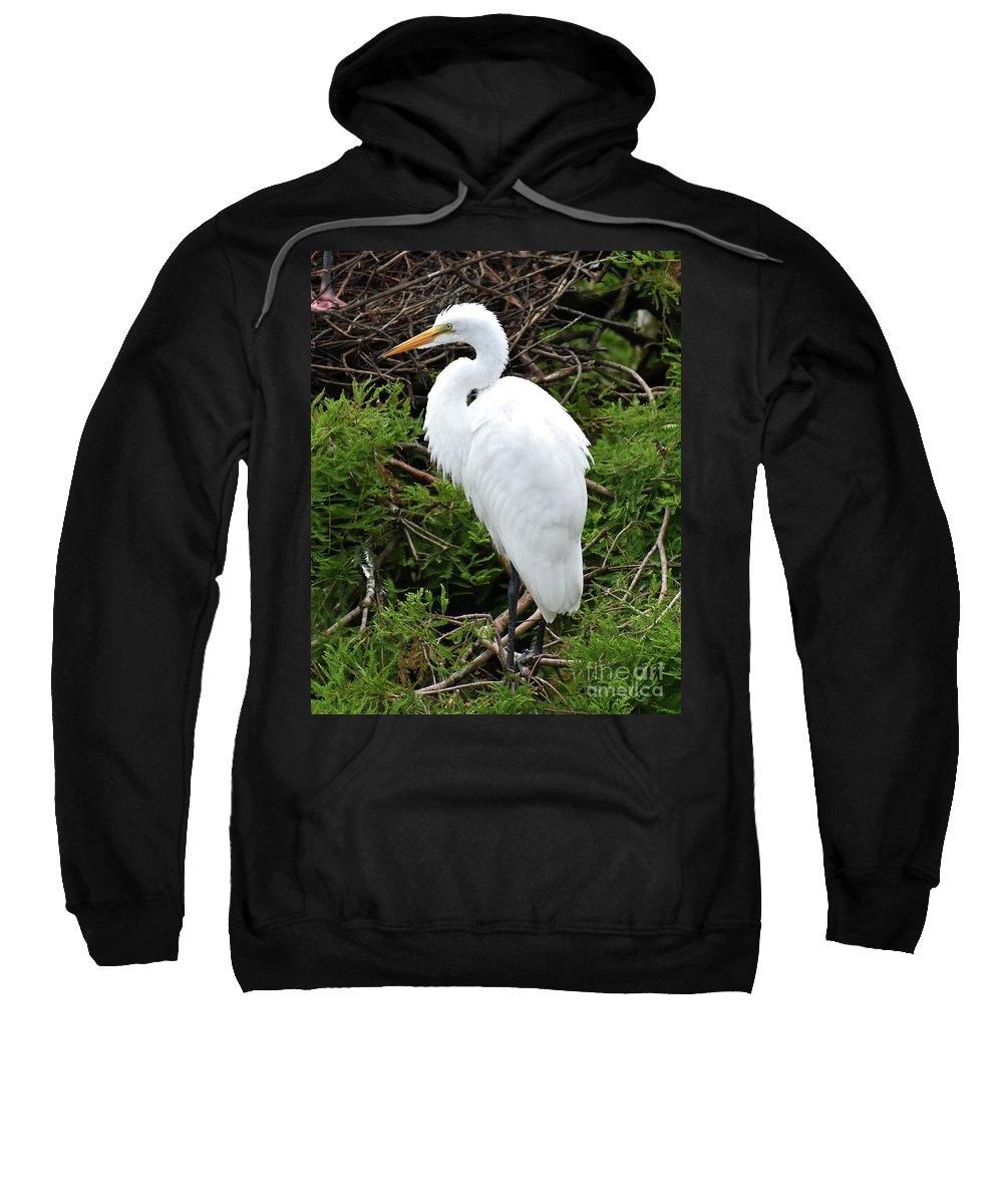 White Egret Sweatshirt featuring the photograph White Egret by Jim Lapp