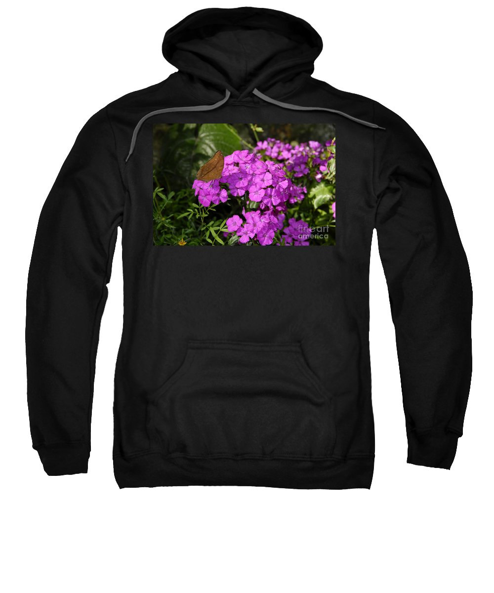 Butterfly Sweatshirt featuring the photograph A Beautiful Landing by David Lee Thompson