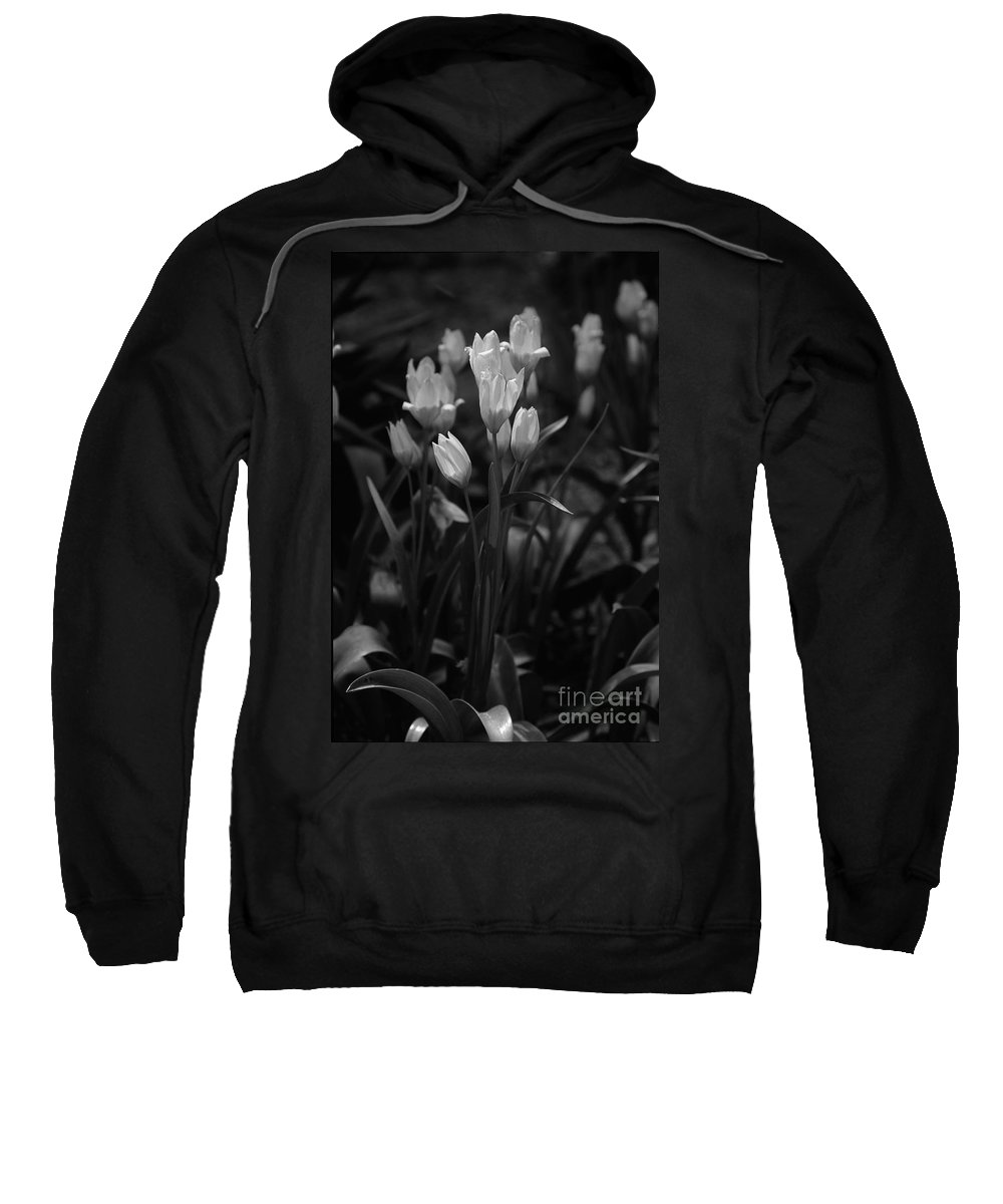 Floral Sweatshirt featuring the photograph A Candid Moment by Kathy McClure