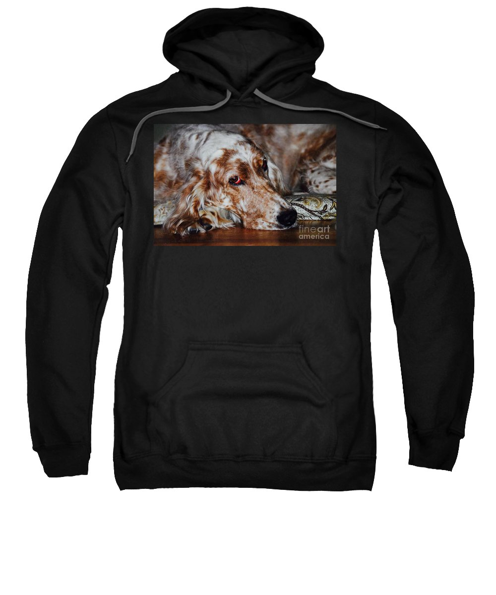 Sweatshirt featuring the photograph A Girl's Best Friend by Andrea Spritzer