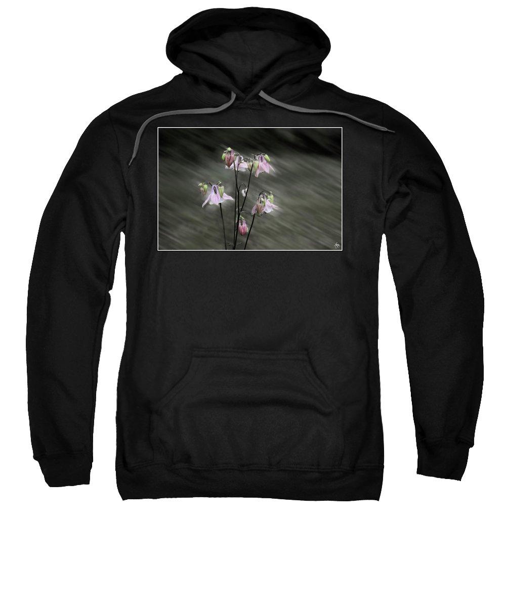 Columbine Sweatshirt featuring the photograph A Rush Of Columbine by Wayne King