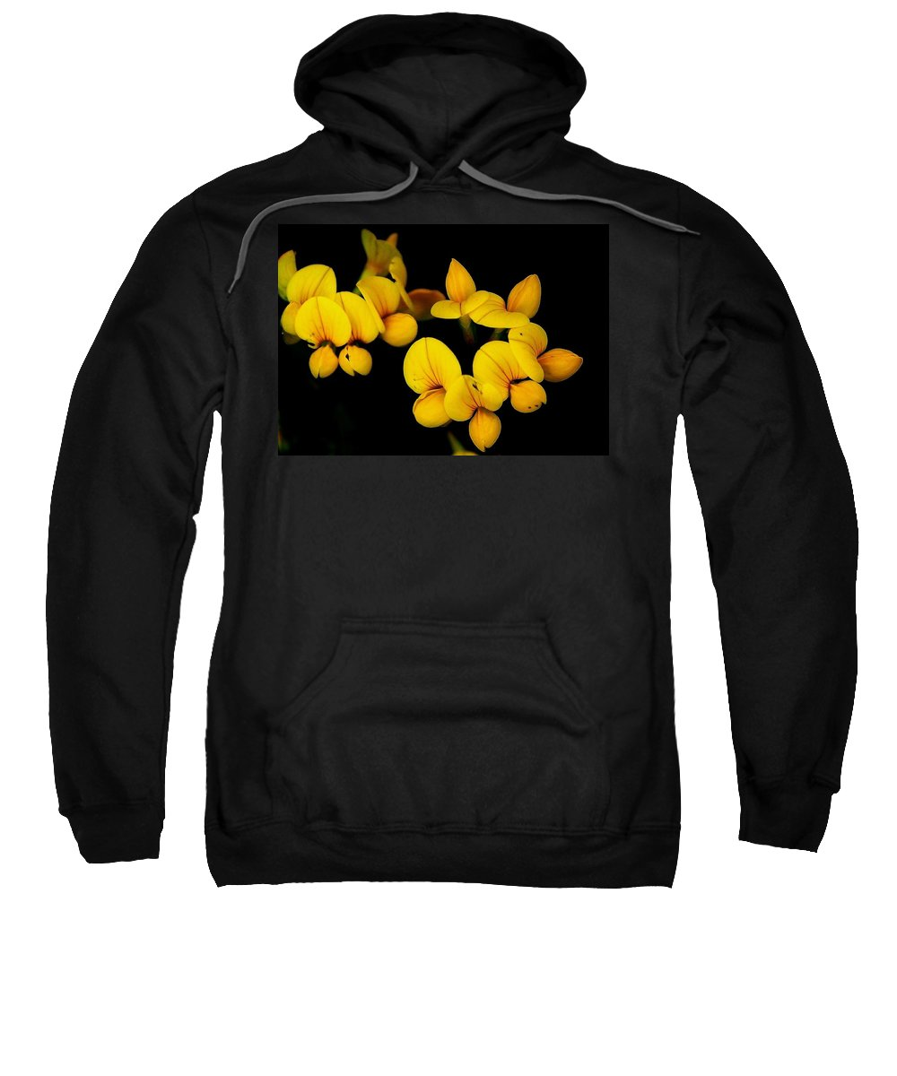 Digital Photography Sweatshirt featuring the photograph A Study In Yellow by David Lane