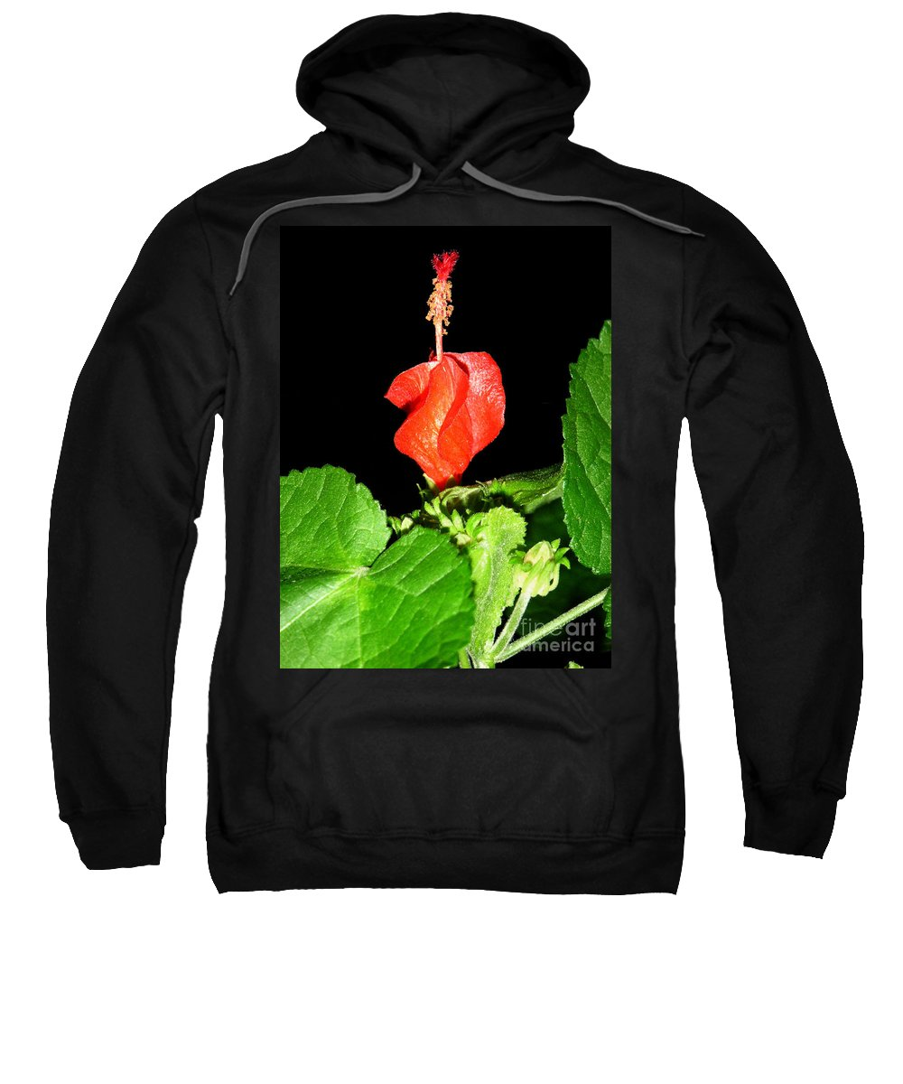Nature Sweatshirt featuring the photograph A Swirl Of Red by Lucyna A M Green