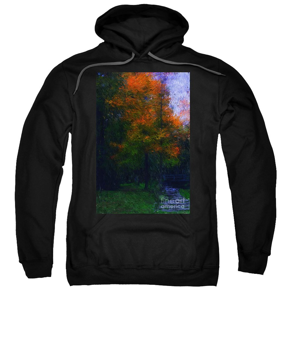 Autumn Sweatshirt featuring the photograph A Walk In The Park by David Lane