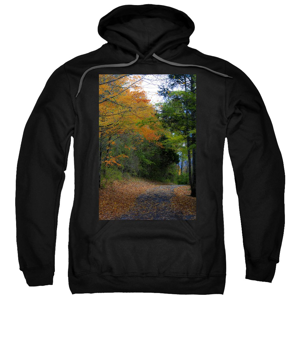 Walk Sweatshirt featuring the photograph A Walk In The Woods by Teresa Mucha