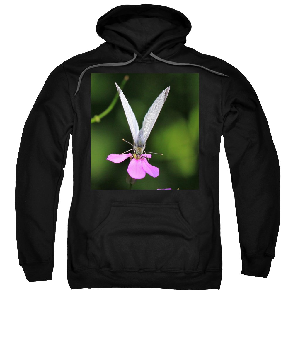 Related Tags: Butterfly Artwork Sweatshirt featuring the photograph About Face by Robert Pearson