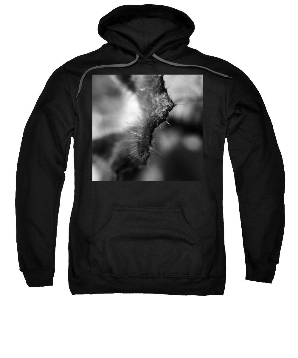 Digital Art Sweatshirt featuring the digital art Abstract 7 by Belinda Cox