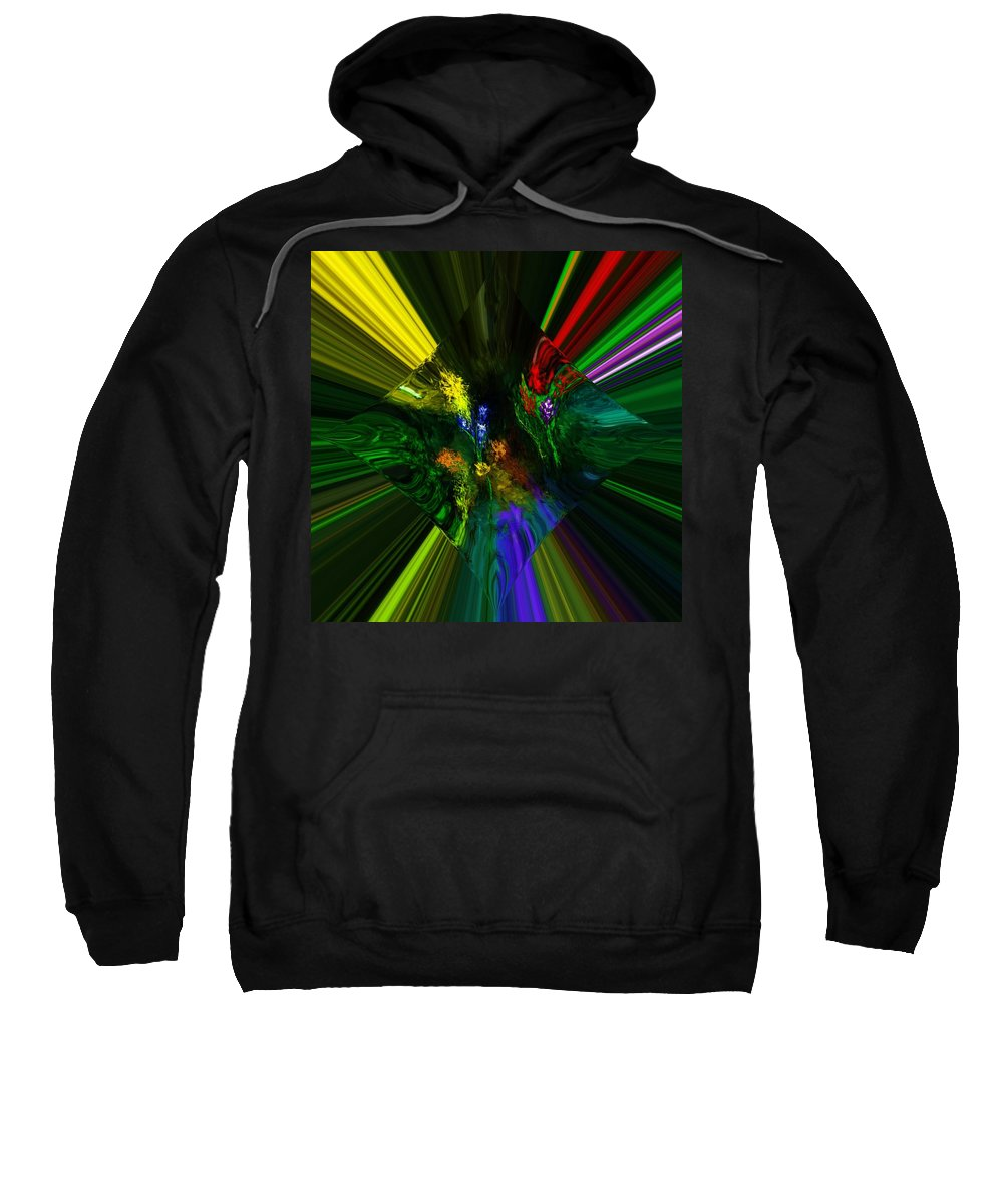 Digital Painting Sweatshirt featuring the digital art Abstract Garden by David Lane