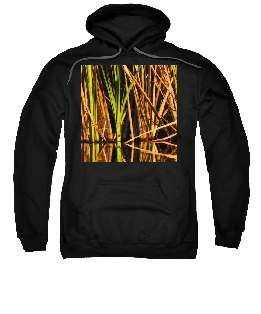 Abstract Sweatshirt featuring the photograph Abstract Reeds Triptych Top by Steven Sparks