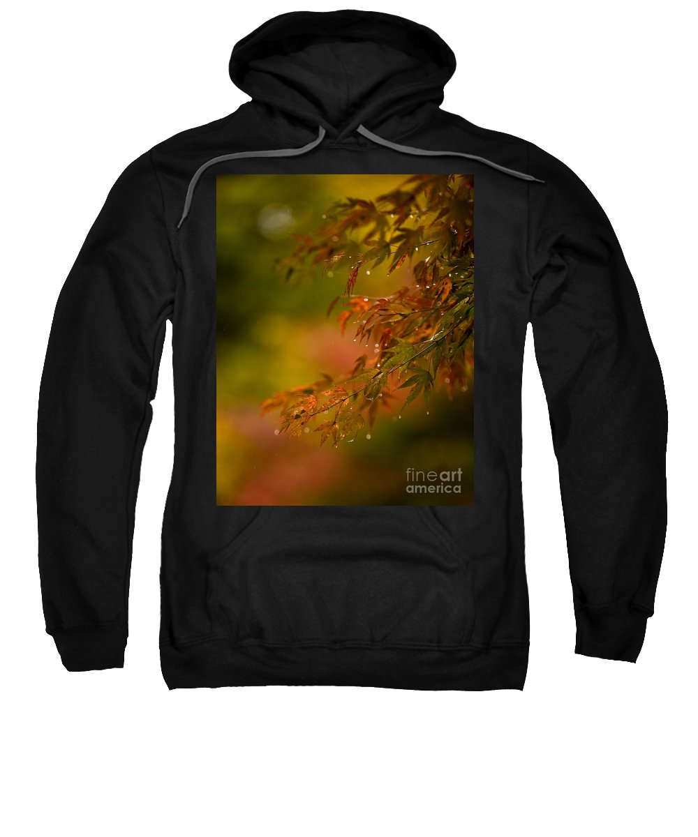 Acer Sweatshirt featuring the photograph Acer Jewels by Mike Reid