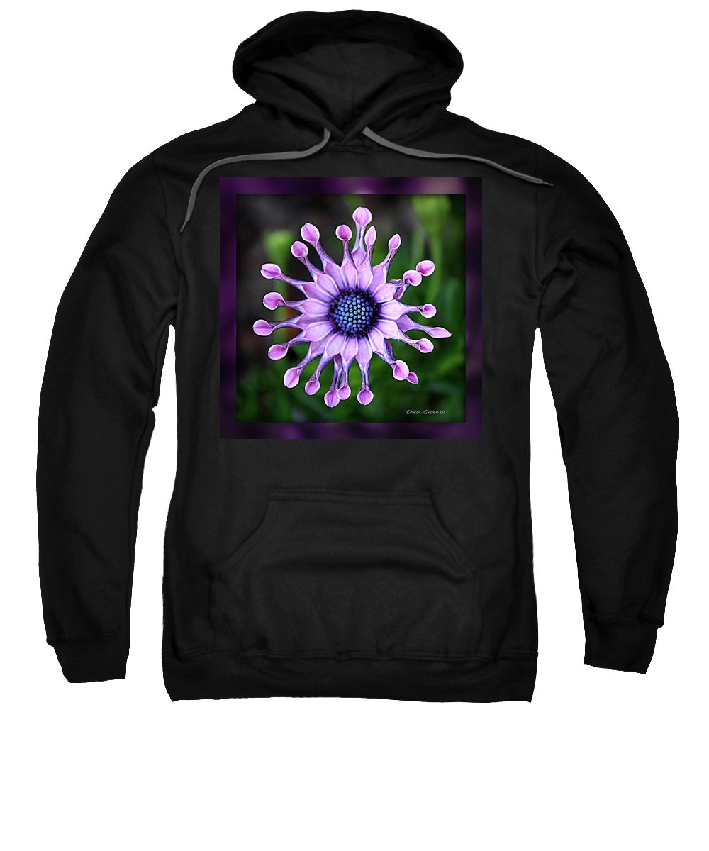 Flower Sweatshirt featuring the photograph African Daisy - Hdr by Carol Groenen