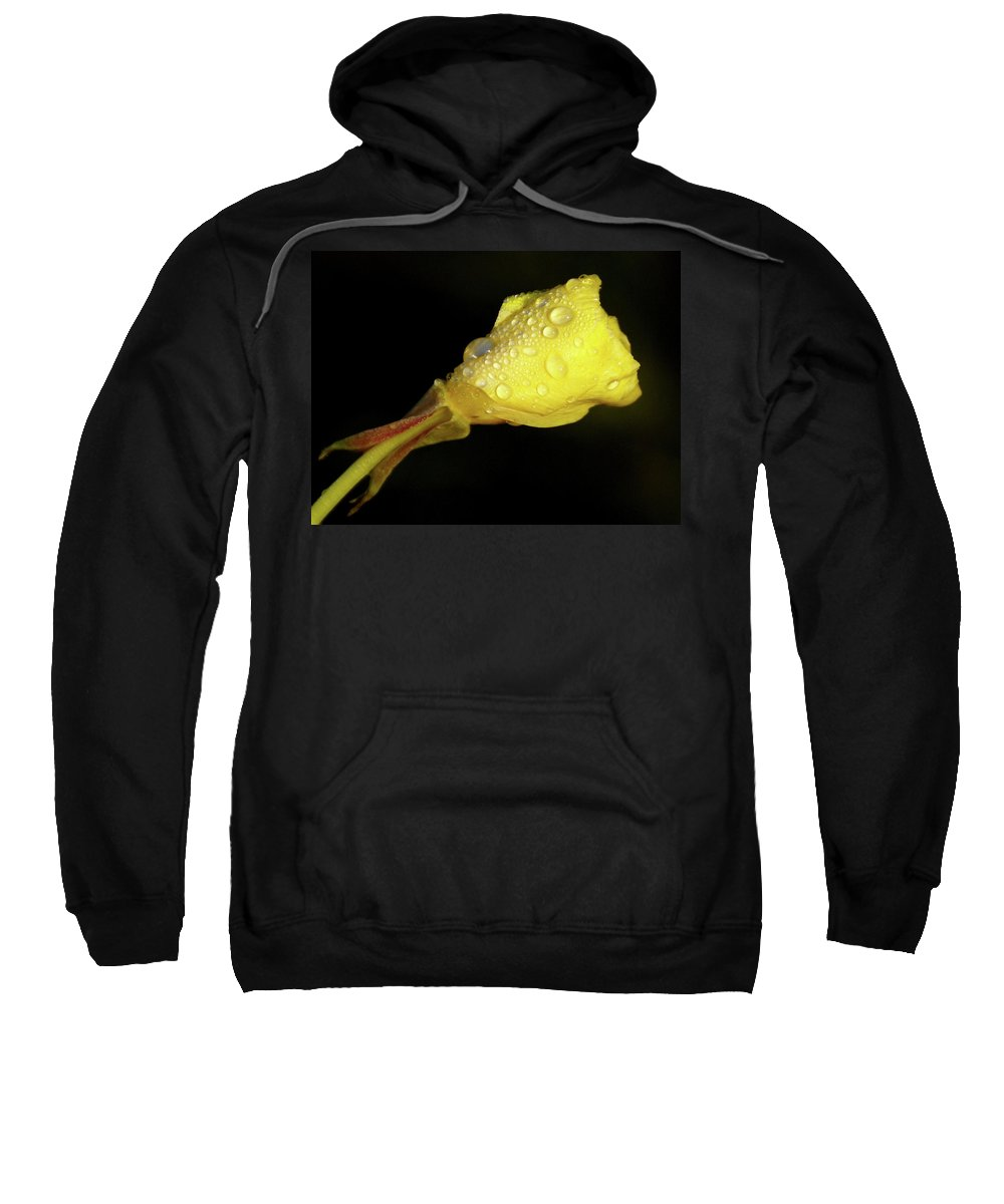 Wildflower Sweatshirt featuring the photograph After The Rain by Linda Shafer