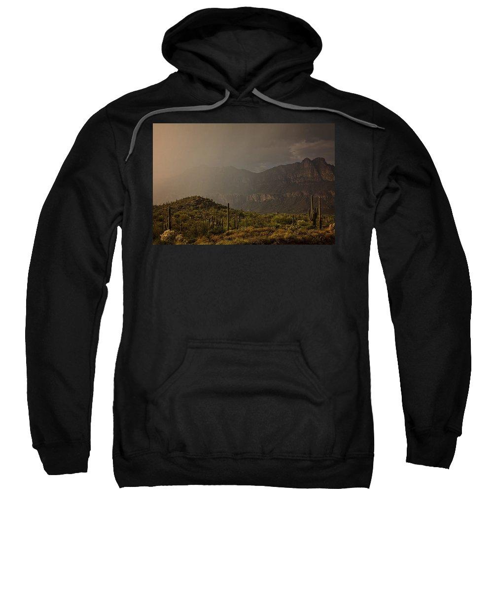 Arizona Sweatshirt featuring the photograph After The Spring Rain by Saija Lehtonen