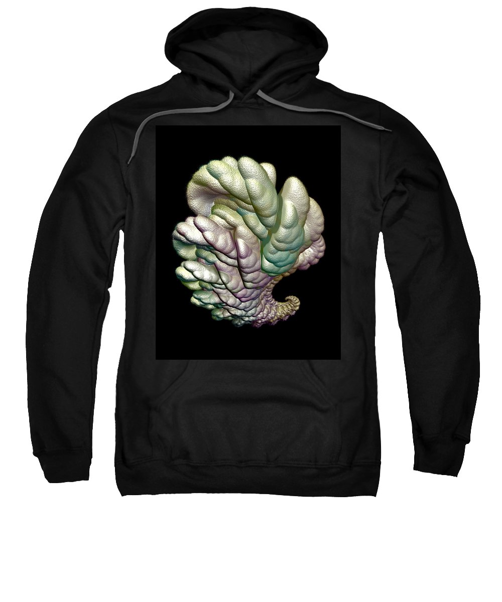 Fractal Sweatshirt featuring the digital art Alien Brain by Frederic Durville